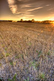 Sunset - countryside Stock Photography