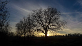 Sunset. A sunset in the countryside royalty free stock images