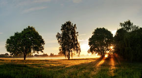 Sunset in countryside. Scenic view of sunset in countryside silhouetting foreground trees stock photos
