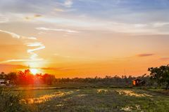 Sunset in the countryside Field Royalty Free Stock Photo