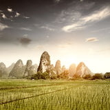 Sunset in the countryside landscape Royalty Free Stock Images