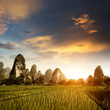 Sunset in the countryside landscape Royalty Free Stock Photography