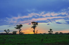 Sunset on countryside Stock Photography
