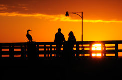 Sunset couple  Royalty Free Stock Photo