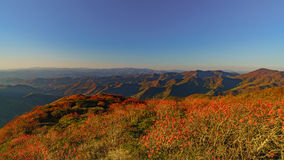 Sunset on Craggy. Craggy Pinnacle Stock Photo
