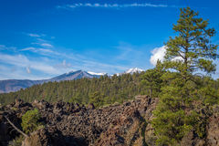 Sunset Crater Stock Photo