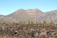 USA, Arizona/Sunset Crater: Lava Flows and Cinder  Stock Photos