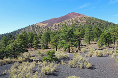 Sunset Crater volcanic cinder cone near Flagstaff, Arizona Royalty Free Stock Image