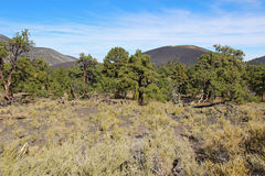 Sunset Crater volcanic cinder cone near Flagstaff, Arizona Royalty Free Stock Photo