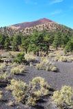 Sunset Crater volcanic cinder cone near Flagstaff, Arizona verti Stock Images