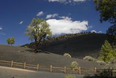 Sunset Crater Volcano in Arizona Stock Photo
