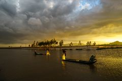 Sunset on cultivated field with fishermen catching fish by throwing nest in An Giang, south of Vietnam stock photos
