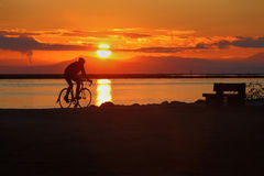 Sunset Cycle, Richmond, British Columbia Royalty Free Stock Photography