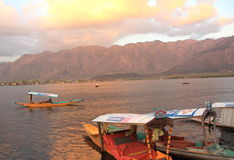 Sunset In Dal Lake. Stock Image