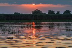 Sunset in the Danube Delta Royalty Free Stock Image