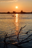 Sunset in Danube Delta Stock Photo