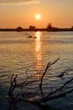 Sunset in Danube Delta Stock Photo