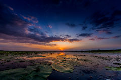 Sunset at Danube Delta Stock Photo