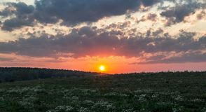 Sunset dawn sunrays over the city sky field flowers royalty free stock images