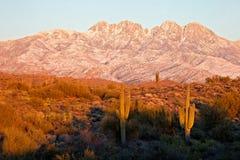Sunset in desert. royalty free stock photos