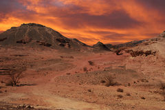 Sunset in desert. Beautiful sunset over hills and mountains of Arava desert in Israel Stock Images