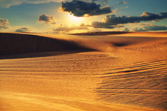 Sunset in the desert Royalty Free Stock Image