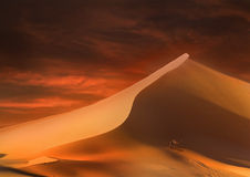 Sunset in the desert Royalty Free Stock Images