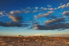 Sunset in desert royalty free stock image