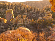 Sunset on Desert Cliffs. Setting sun lights up the Hoodoo rock formations that form the pinnacles and cliffs at Chiricahua National Monument, Arizona Stock Images