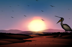 A sunset at the desert with a flock of birds Royalty Free Stock Photos