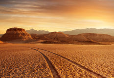 Sunset desert Royalty Free Stock Photography
