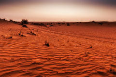 Sunset at the desert. And red sands royalty free stock image