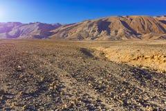 Sunset in Desert Stock Photography