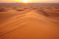 Sunset in the desert sand Royalty Free Stock Image