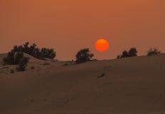 Sunset in desert Stock Photos