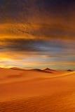 Sunset desert Stock Photos