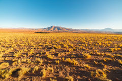Sunset on the desertic Andean highlands, Southern Bolivia Royalty Free Stock Photos