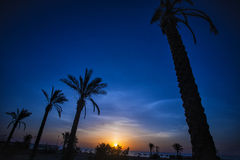 Sunset Divine Evening Scene Stock Image