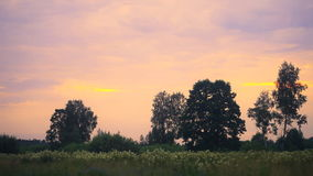 Sunset with dramatic sky. Over green field stock video