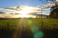 Sunset and dramatic sky in Scotland. Sunrise over a farmers fields royalty free stock images