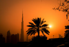 Sunset in Dubai Royalty Free Stock Images