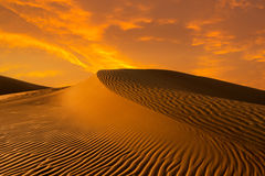 Sunset dune Stock Image