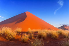 Sunset dunes of Namib desert Royalty Free Stock Image