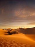 Sunset dunes Royalty Free Stock Image