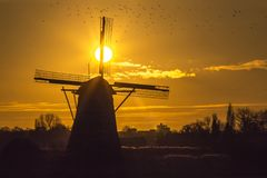 Sunset on the Dutch windmill Royalty Free Stock Image