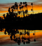 Sunset Eastbeach Royalty Free Stock Photography