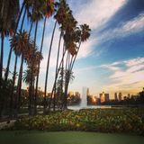 Sunset in Echo Park. Near downtown Los Angeles Royalty Free Stock Photography