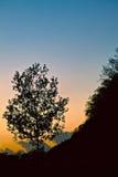 Sunset Edge. Silhouette landscape photo of sunset edge royalty free stock photos