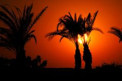 Sunset in Egypt Royalty Free Stock Images