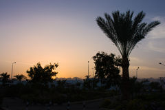 Sunset in Egypt Royalty Free Stock Photo
